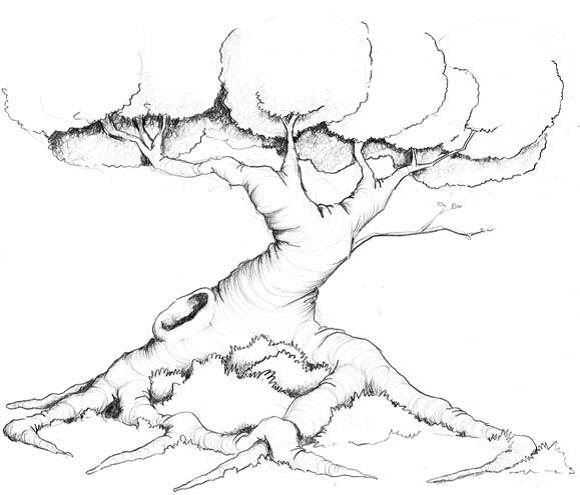 Дерево с корнями нарисовать