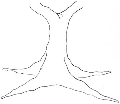 Деревья 5