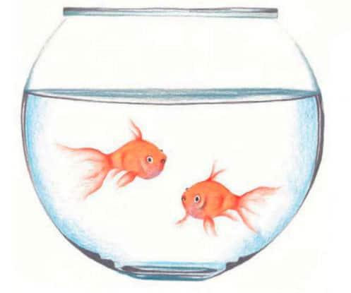 Как-нарисовать-рыбок-в-аквариуме-цветными-карандашами