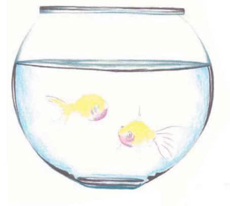 Как-нарисовать-рыбок-в-аквариуме-цветными-карандашами3