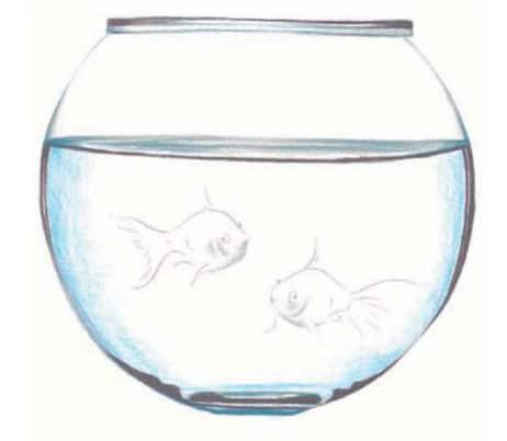 Как-нарисовать-рыбок-в-аквариуме-цветными-карандашами4