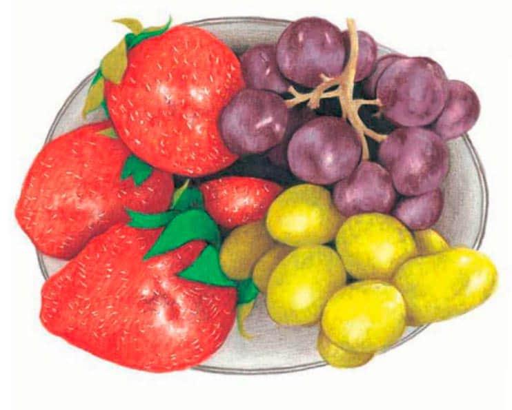 как-нарисовать-натюрморт-с-фруктами-цветными-карандашами2