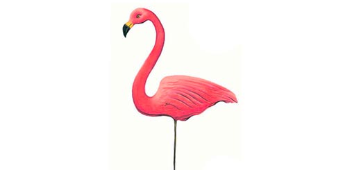 как-нарисовать-фламинго-цветными-карандашами-миниатюра