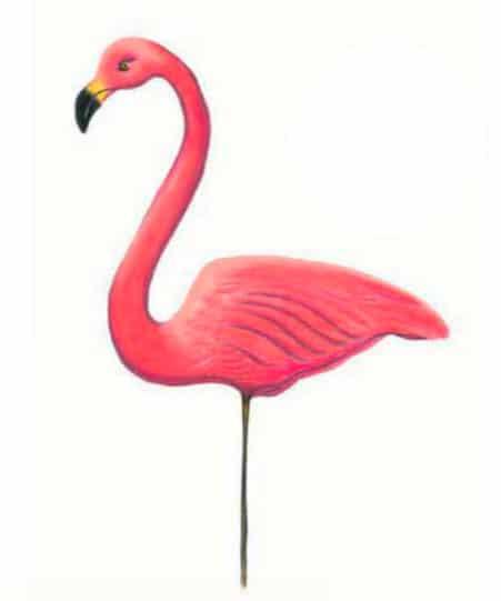 как-нарисовать-фламинго-цветными-карандашами1
