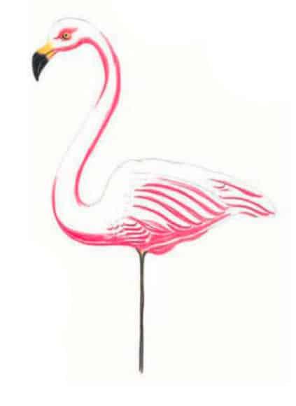 как-нарисовать-фламинго-цветными-карандашами4