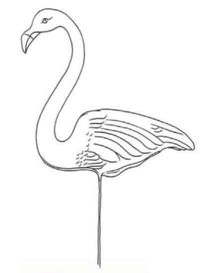 как-нарисовать-фламинго-цветными-карандашами6
