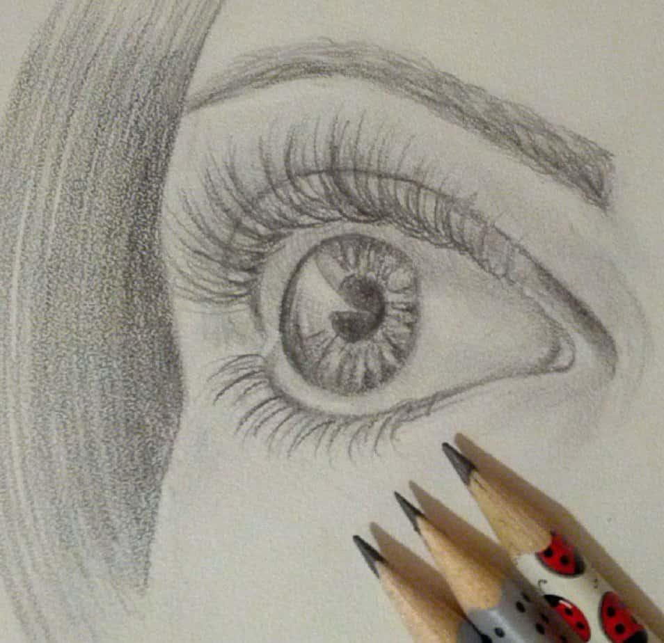 центре курсы рисования карандашом для начинающих взрослых в москве благодаря