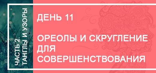 день11