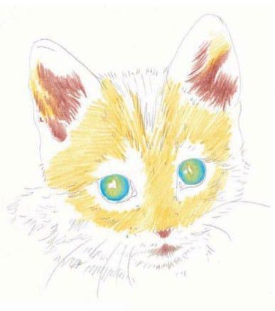 как-нарисовать-котенка1