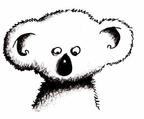 как нарисовать коалу (1)