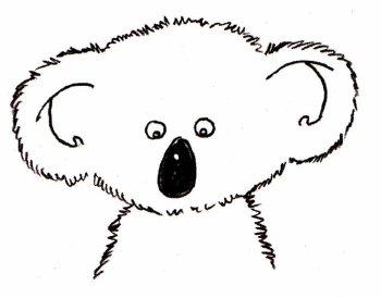 как нарисовать коалу (17)