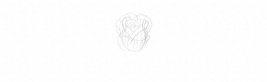 kak-narisovat-rozu-15