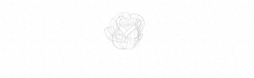 kak-narisovat-rozu-16