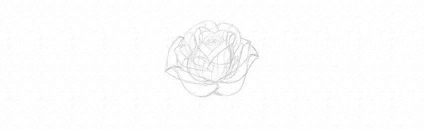 kak-narisovat-rozu-18