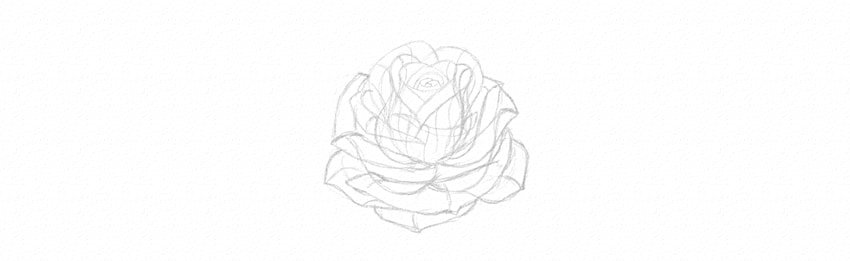 kak-narisovat-rozu-20