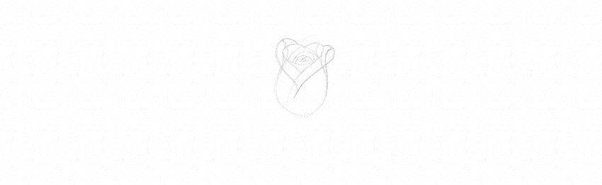 kak-narisovat-rozu-9