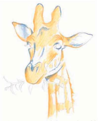 как-нарисовать-жирафа-цветными-карандашами4