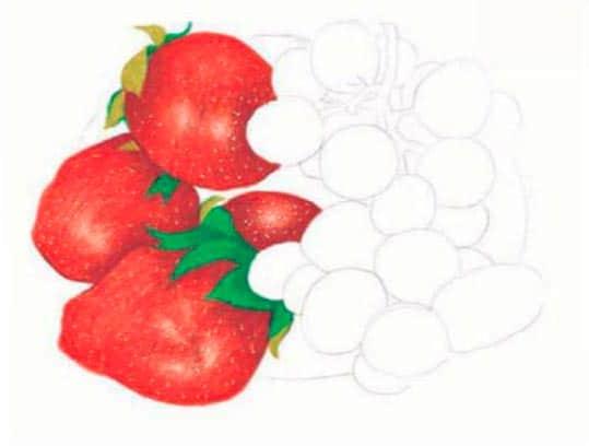 как-нарисовать-натюрморт-с-фруктами-цветными-карандашами5