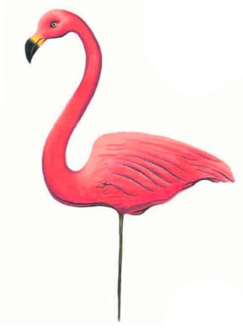 как-нарисовать-фламинго-цветными-карандашами