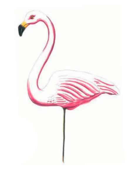 как-нарисовать-фламинго-цветными-карандашами3