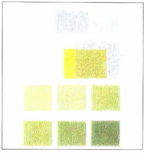нейтральный-зеленый-ряд