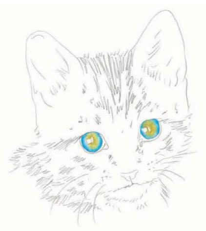 как-нарисовать-котенка.4jpg