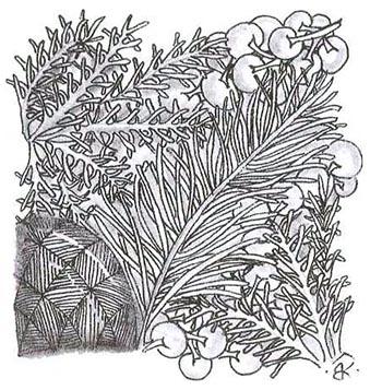 «Ножка ваточника» нарисована после узоров «Вердигог» и «Коралл» для заполнения заднего плана.