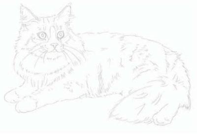 как нарисовать кошку поэтапно (2)