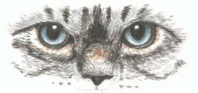 как нарисовать кошку поэтапно (6)