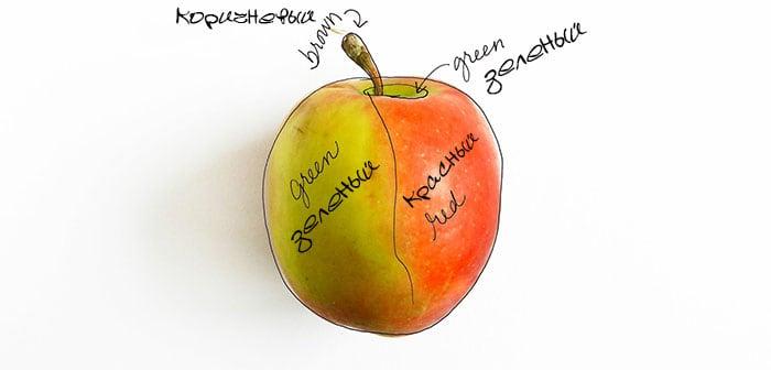 как нарисовать яблоко акварелью (4)