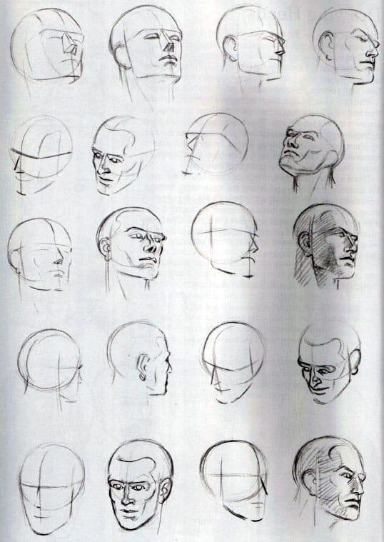 голова-в-различных-ракурсах