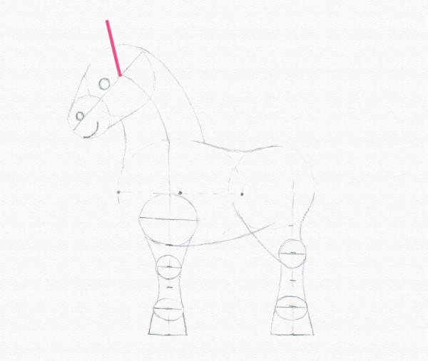 Как нарисовать пони поэтапно: основы