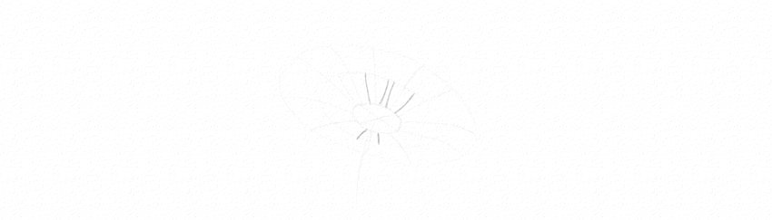 kak-narisovat-romashku-karandashom-8