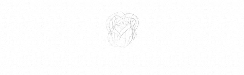 kak-narisovat-rozu-13