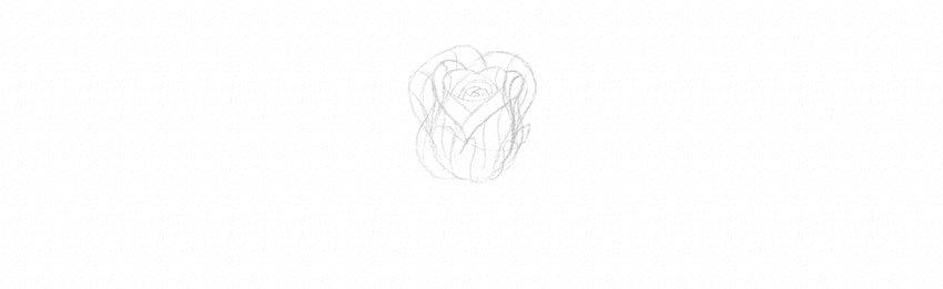 kak-narisovat-rozu-14