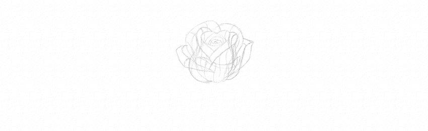 kak-narisovat-rozu-17