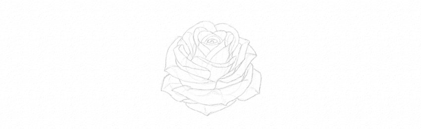 kak-narisovat-rozu-21