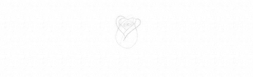 kak-narisovat-rozu-8