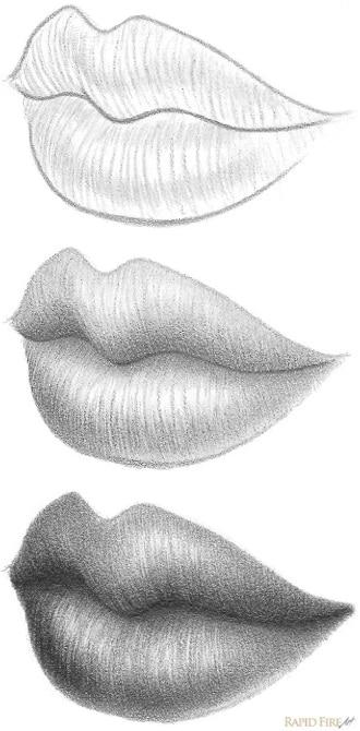 Как нарисовать губы карандашом в перспективе ¾